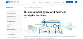 Business Intelligence and Business Analytics Services